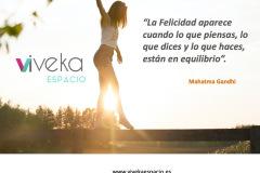 2_Plantillas_Carteles_VIVEKA_Espacio