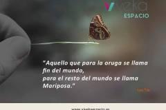 Aquello que para la oruga se llama fin del mundo, para el resto del mundo se llama Mariposa (Lao Tze).